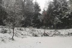 Alzabandiera Inverno
